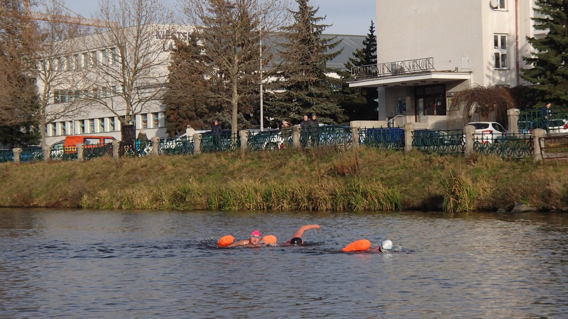 River Labe 2019 - Plavkyně z druhé rozplavby na 1000 metrů.